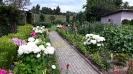 piękny_ogród_6