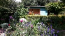 piękny_ogród_7
